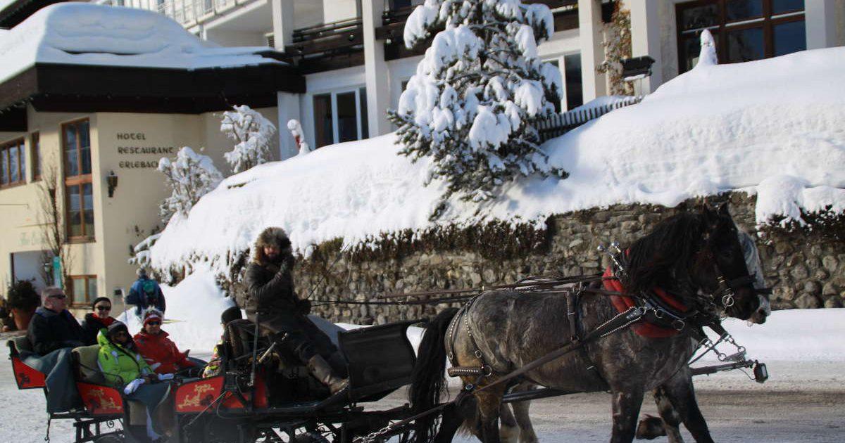 Kutschenfahrt Hotel Erlebach BB