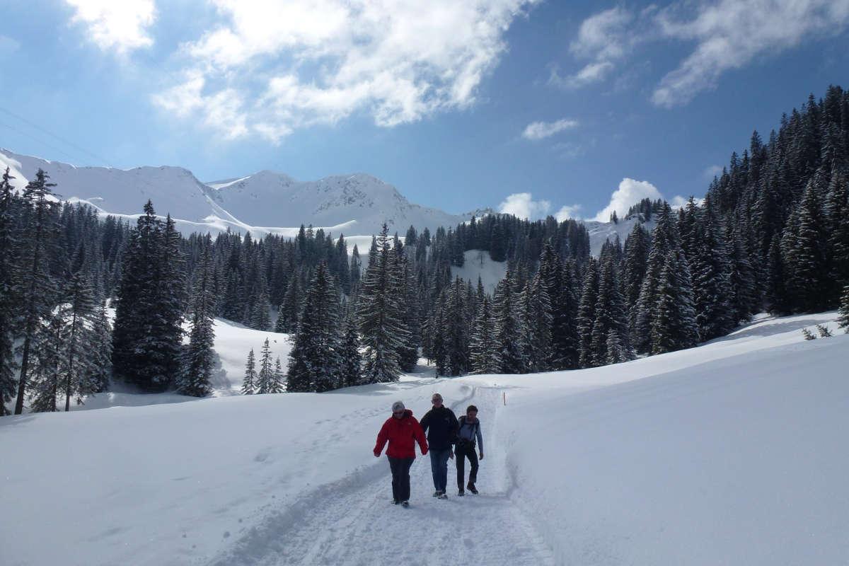 Winterwandern Hotel Erlebach Kleinwalsertal