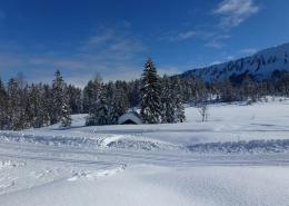 Naturwunder Kleinwalsertal Hotel Erlebach BB